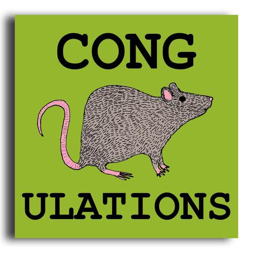 congratulations_rat_funny_greeting_card