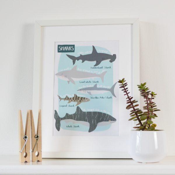 Shark print beautifully illustrated by Hannah Stevens