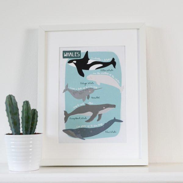 whales print by Hannah Stevens
